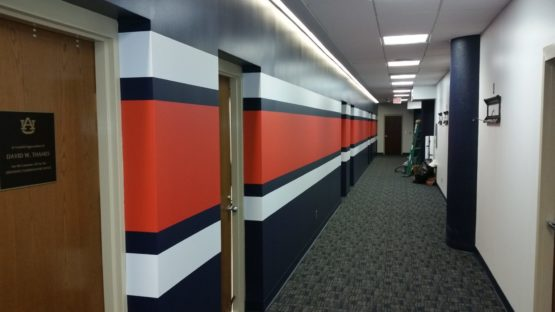 Auburn University Stripe